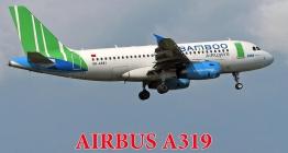 BAMBOO-Về miền xanh Côn Đảo-  Ưu đãi vé máy bay lên tới 50%